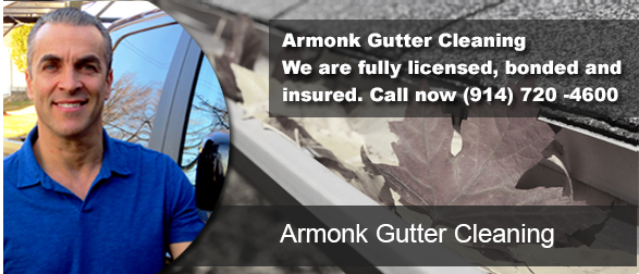 Armonk NY Gutter Cleaning