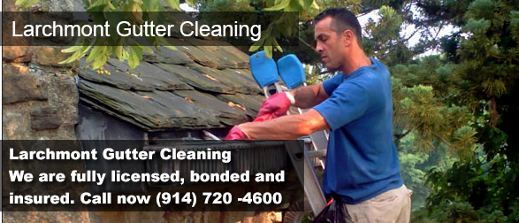 Larchmont NY Gutter Cleaning