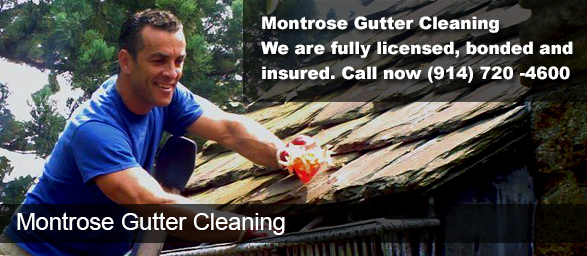 Montrose NY Gutter Cleaning