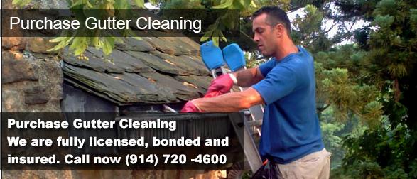 Purchase NY Gutter Cleaning