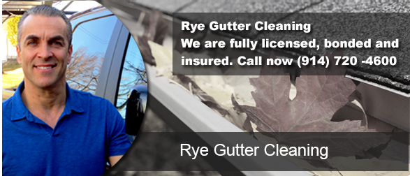 Rye NY Gutter Cleaning