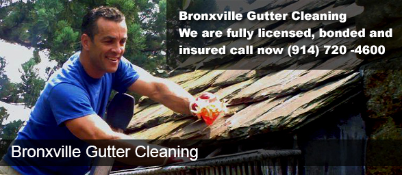 Bronxville NY Gutter Cleaning