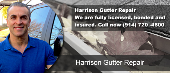 Harrison Gutter Repair